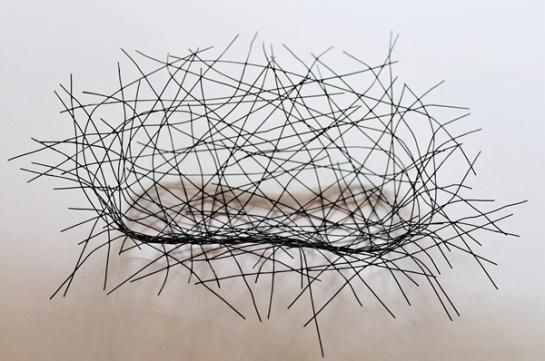鳥の巣トレイ2